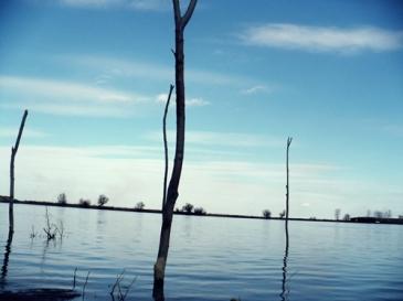 Dunărea la Mahmudia